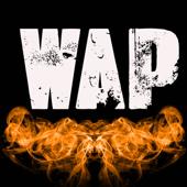 Wap (Originally Performed by Cardi B and Megan Thee Stallion) [Instrumental]