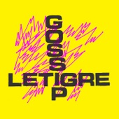 Gossip - Standing In the Way of Control (remix With Le Tigre)