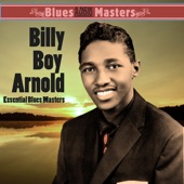 Billy Boy Arnold - You Better Cut That Out