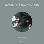 Tim van Werd - Same Three Words