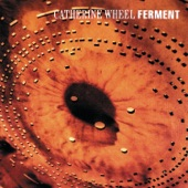 Catherine Wheel - Flower To Hide