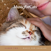 Music for Cats Album Two - David Teie