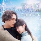 雪の華 feat.Taro Hakase