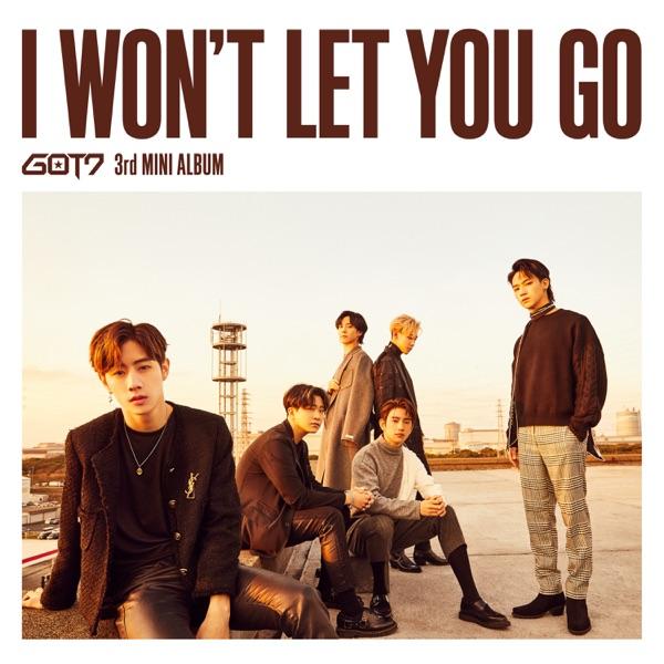 I Won't Let You Go - Single