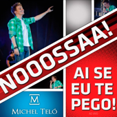 Ai Se Eu Te Pego! Ao Vivo Michel Teló - Michel Teló