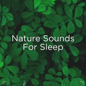 "Nature Sounds Nature Music & Nature Sounds - !!"" Nature Sounds for Sleep ""!!"