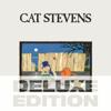 Cat Stevens - Morning Has Broken (Demo Version) artwork