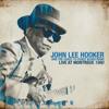 The Healer Live - John Lee Hooker mp3
