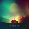 Wonder - Ryan Farish