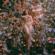 More Than That - Lauren Jauregui