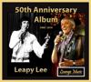Leapy Lee - Little Arrows  artwork
