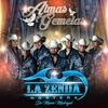 Almas Gemelas - Single