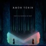Amon Tobin - Fooling Alright