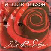Willie  Nelson - Stealing Home