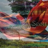 Erik Scott - The Invisible Wand
