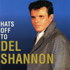 Del Shannon - The Answer to Everything artwork