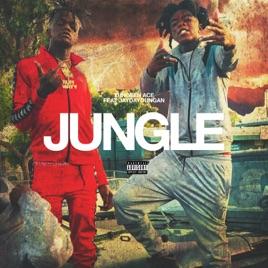 Yungeen Ace & Jaydayoungan – Jungle (feat. Jaydayoungan) – Single [iTunes Plus M4A]   iplusall.4fullz.com
