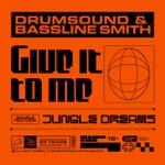 Drumsound & Bassline Smith - Give It To Me