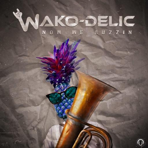 Now We Buzzin - Single by Wako-Delic