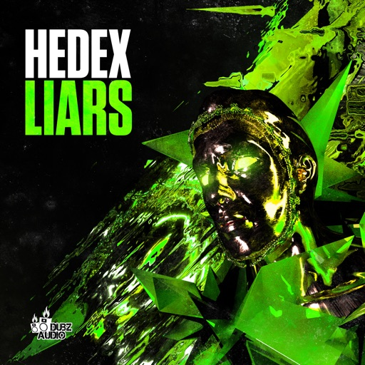 Liars - Single by Hedex