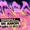 Mi Amor - Mosimann & Antoine Delvig lyrics