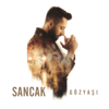 Sancak - Düşün ki artwork