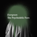 The Psychedelic Furs - Evergreen