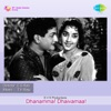 Nee Madhi Challagaa From Dhanamma Dhaivamaa Single