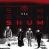 Go_A - SHUM artwork