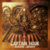 Captain Hook & Perfect Stranger - Perfect Hook (Riktam & Bansi Remix) artwork