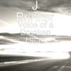 J Brinker - Voice of a Drunken Heart  artwork