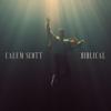 Biblical - Calum Scott mp3