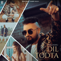 Dil Todta Mp3 Songs Download