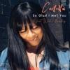 So Glad I Met You - Single (feat. Willie Bradley) - Single