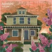 Humbird - Plum Sky
