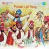Punjabi Lok Rang