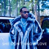ZaRio - She Don't Know Love