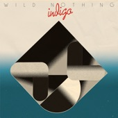 Wild Nothing - Shallow Water