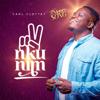 Carl Clottey - Nkunim (The Victory Song) artwork