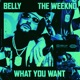 What You Want feat The Weeknd Single