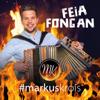 Markus Krois - Feia fongan Grafik