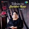 Tribute to Surinder Kaur Vol 1 Single