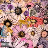 Beautiful Mistakes - Maroon 5 & Megan Thee Stallion mp3