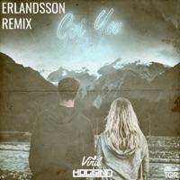 Got You Babe (Erlandsson Remix) - Single