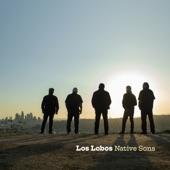 Los Lobos - Native Son