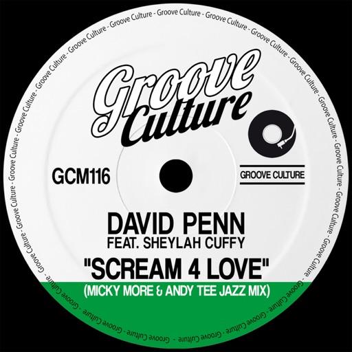 Scream 4 Love (feat. Sheylah Cuffy) [Micky More & Andy Tee Jazz Mixes] - Single by David Penn