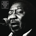 Muddy Waters - Everything's Gonna Be Alright