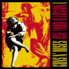 Use Your Illusion, Vol. 1 - Guns N' Roses