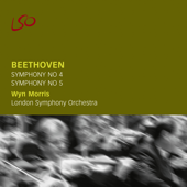 Symphony No. 5 in C Minor, Op. 67: I. Allegro con brio