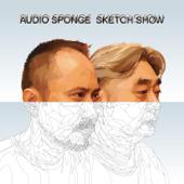 audio sponge